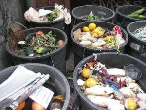 Одвојено одлагање хране. Слика: Wikimedia Commons