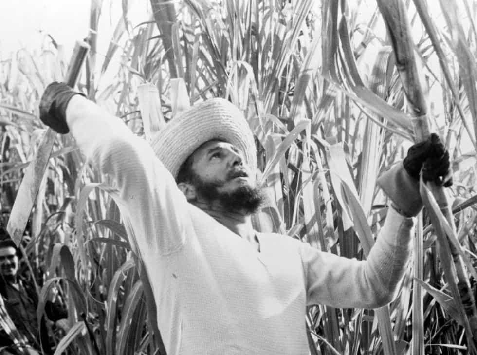 Фидел по време на сафрата–събирането на реколтата от захарна тръстика–през 1961 г.