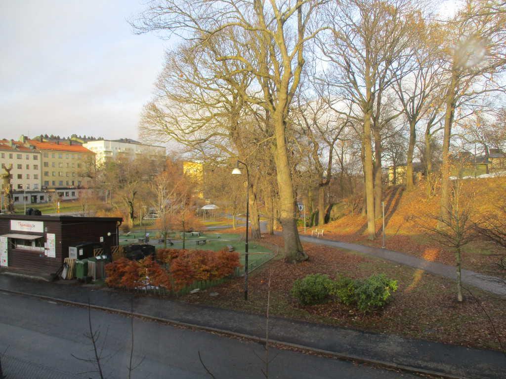 Зимата в Стокхолм е мека и рядко температурите падат сериозно под нулата
