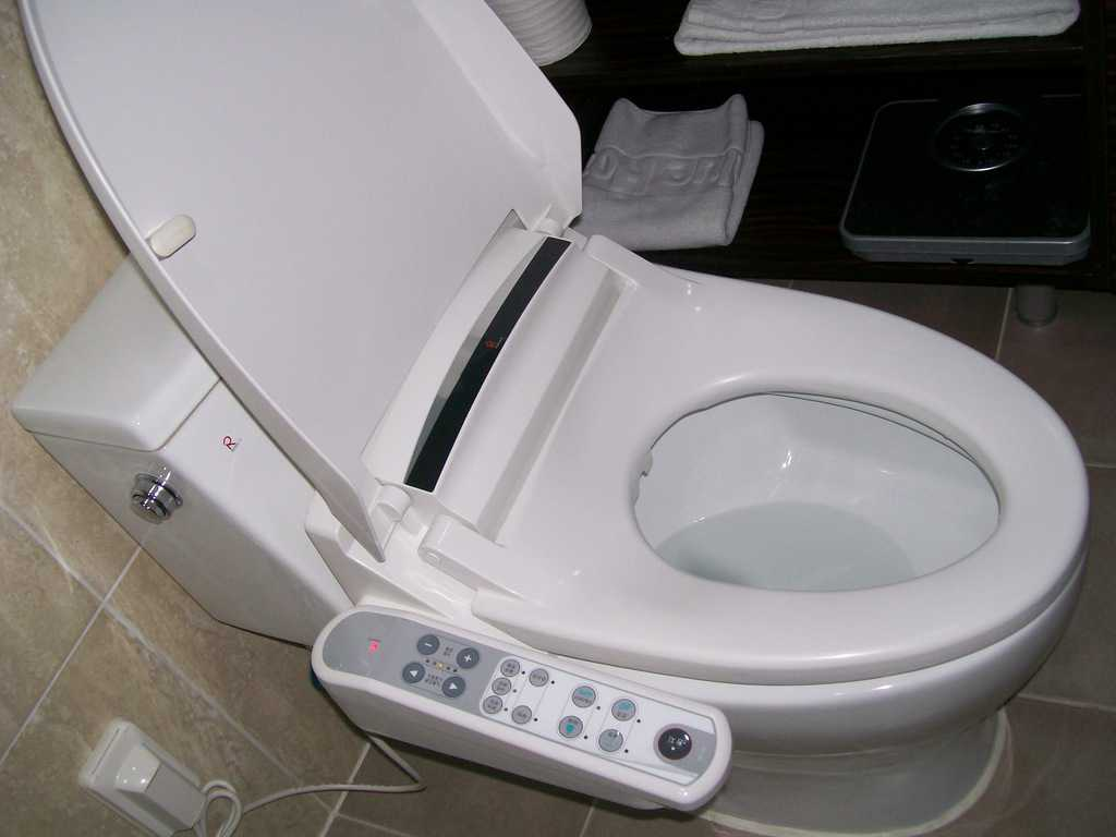 Съвременната южнокорейска толетна чиния непременно е снабдена с електронно устройство за нагласяне на всякакви екстри. Снимка: Къдринка Къдринова
