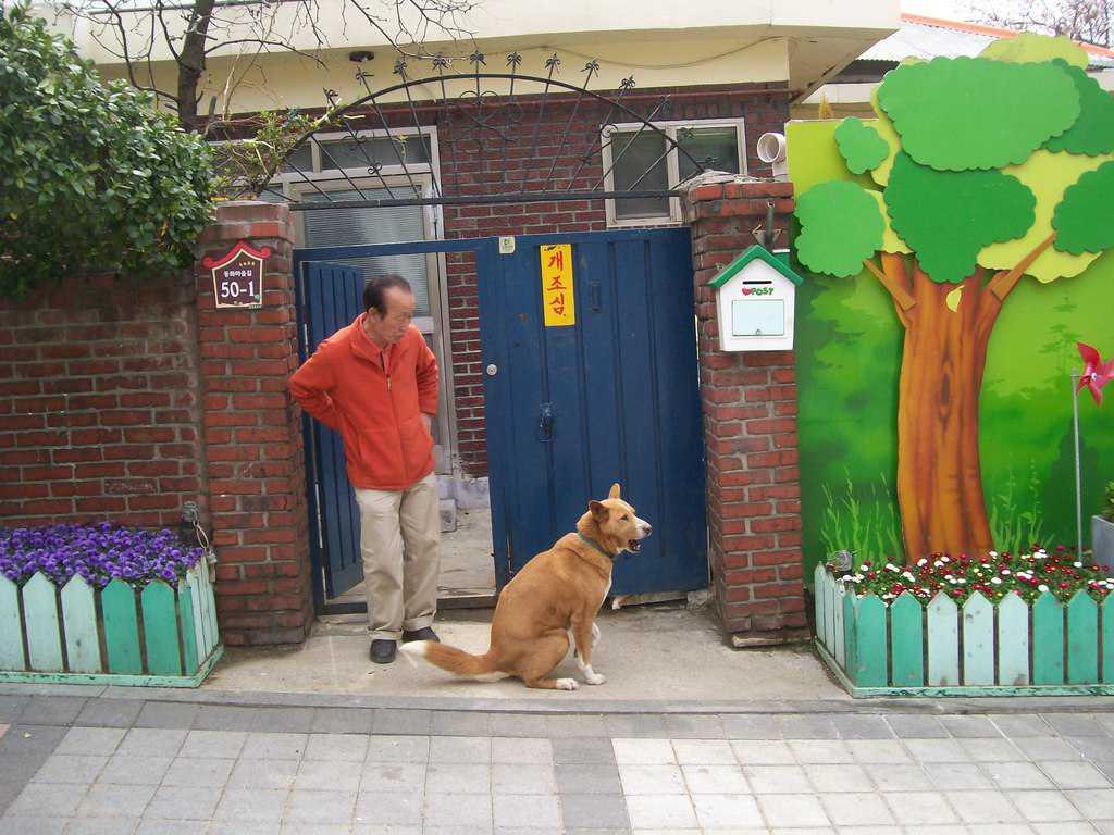Още един идиличен момент от Китайския квартал. Снимка: Къдринка Къдринова
