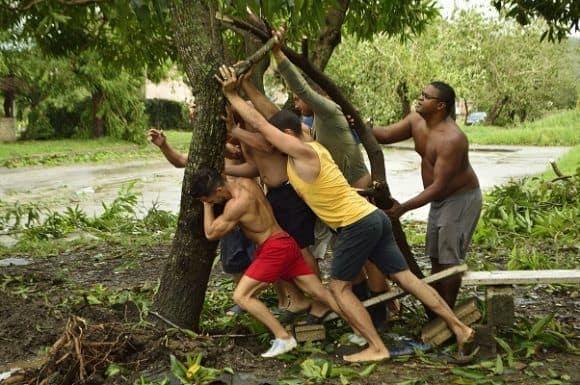 На много места още преди да дойдат специализираните екипи хората сами започнаха да вдигат и укрепват паднали дървета и да разчистват пътищата. Снимка: Cubadebahe