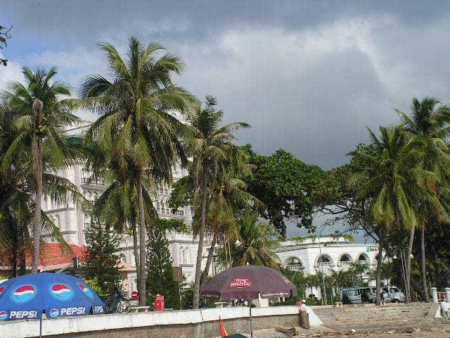 Палми разделят плажната ивица от хотелите в Ня Чан. Снимка: Къдринка Къдринова