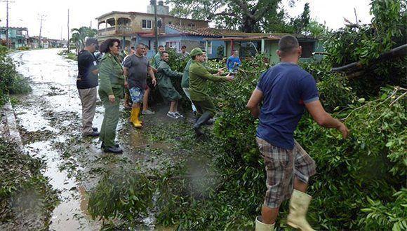 Гражданска защита вдига паднали дървета от шосе в провинция Матансас. Снимка: Cubadebate