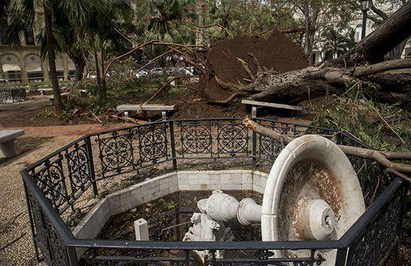 Ураганните ветрове изстръгнаха дървета и събориха фонтан в Централния парк на Хавана. Снимка: Cubadebate