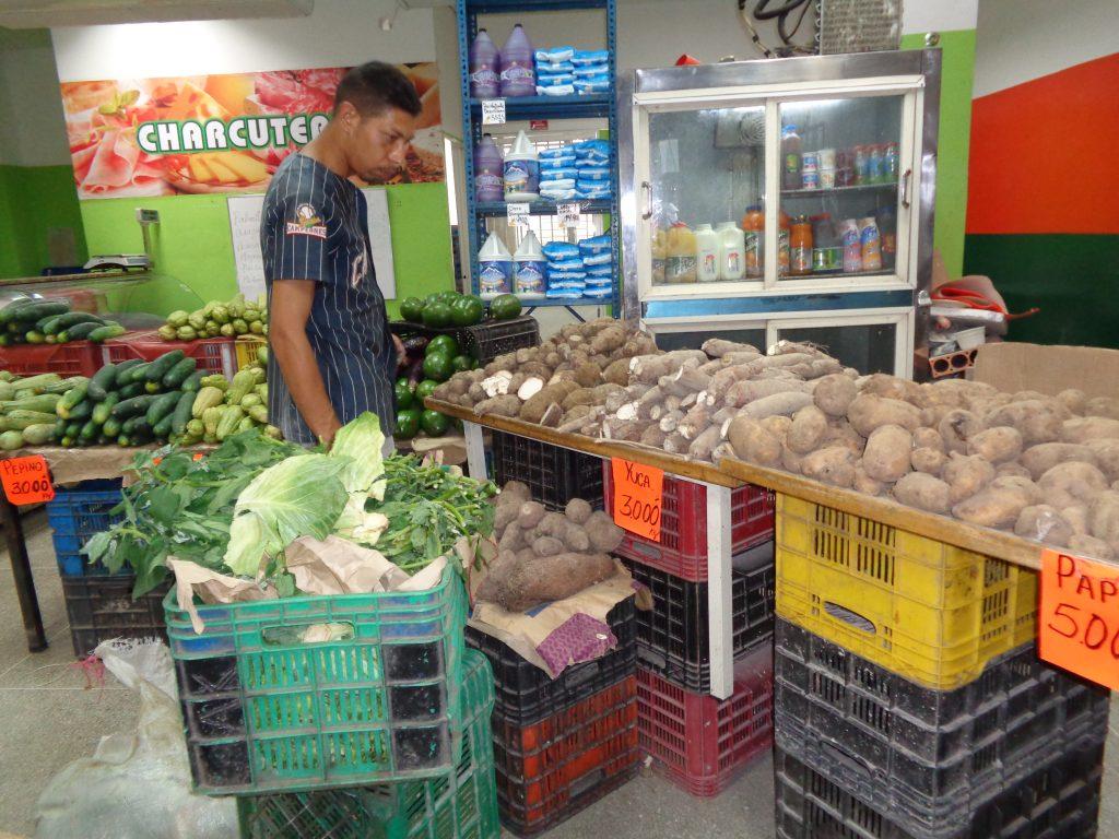 Зеленчуците изобилстват и са на съвсем достъпни цени. Снимка: Къдринка Къдринова