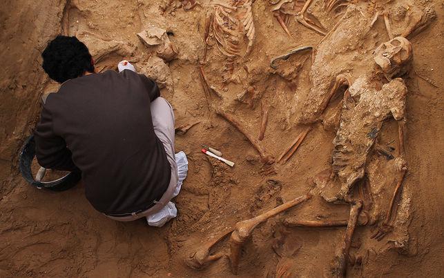 Един от многобройните общи гробове на испански републиканци, открити с усилията на Балтасар Гарсон и други поборници за историческа справедливост. Снимка: El Diario