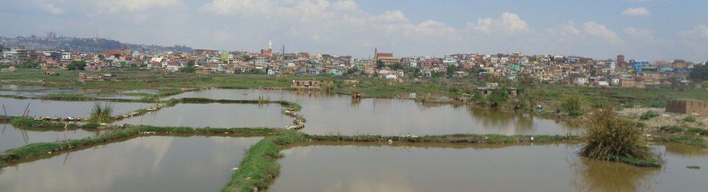 Оризища и бедняшки колиби опасват Антананариво, който е разпилян и по хълмовете наоколо. Вляво, в далечината, се вижда хълмът с някогашния кралски дворец. Снимка: Къдринка Къдринова
