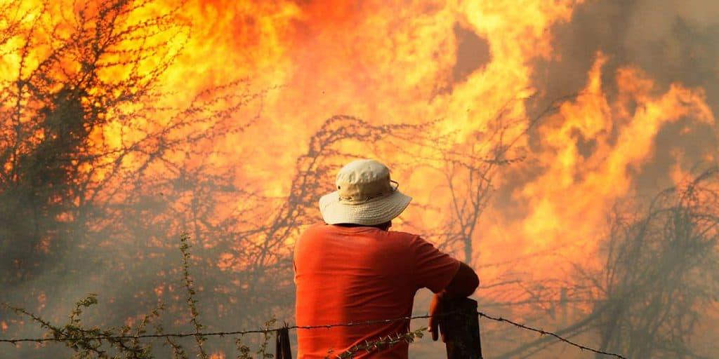 Толкова масови и унищожителни пожари, колкото са сегашните, Чили досега не е имало в историята си. Снимка: publimetro.cl