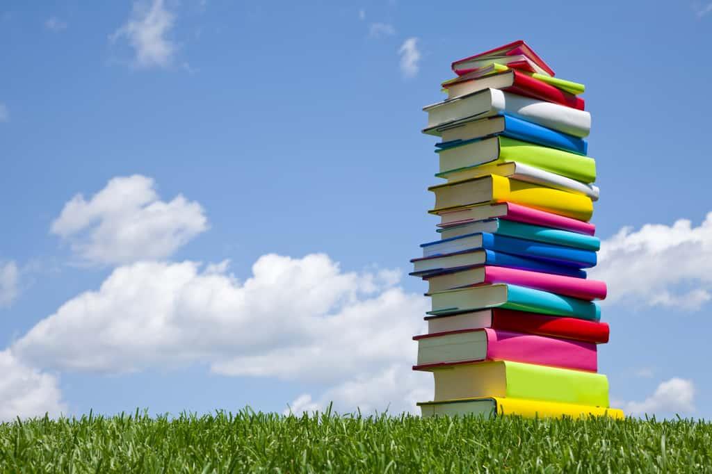 Какво поражда необходимостта от купища различни учебници по един и същи предмет? Снимка: Kidnewus.ro