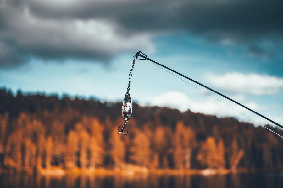 Кой държи въдицата и кой се хваща на нея? (снимка: Pexels, CC0)