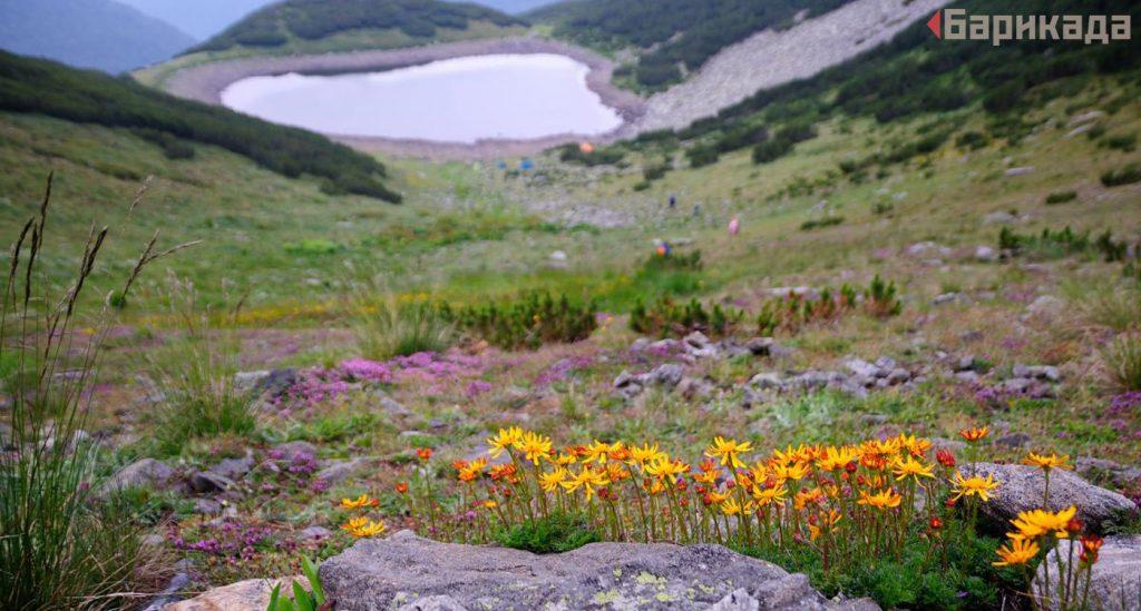 """Кадър от резервата """"Баюви дупки – Джинджирица"""". Още снимки - тук."""