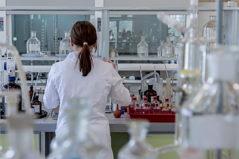 В сферата на професионалните и научни дейности няма разлика в заплащането между половете. Снимка: Pixabay