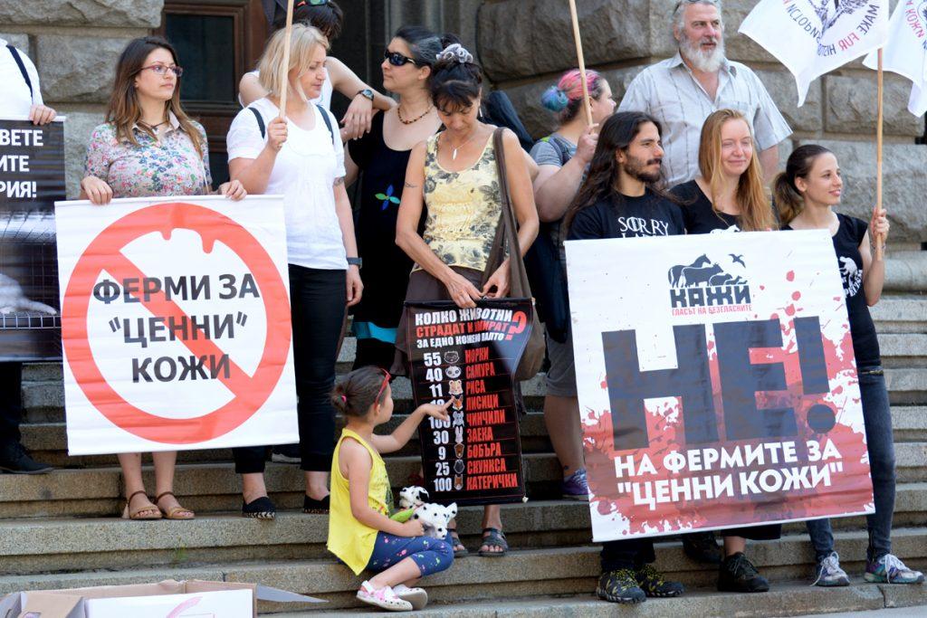 """Снимка: Николай Драганов, """"Барикада"""" ©"""