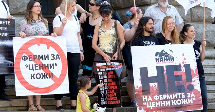 """Румен Порожанов. Снимка: Николай Драганов, """"Барикада"""""""