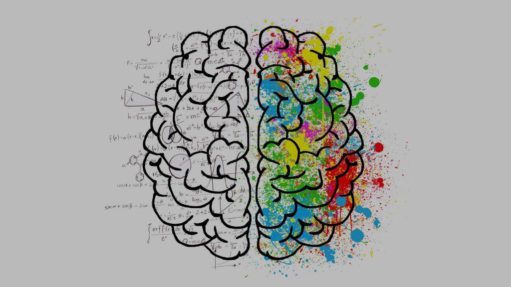 split-brain-2