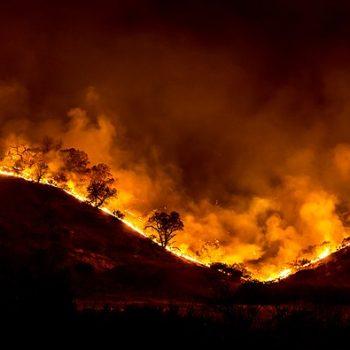 640px-Woolsey_Fire_-_tree_ridge_in_flames_20181119-PB-008